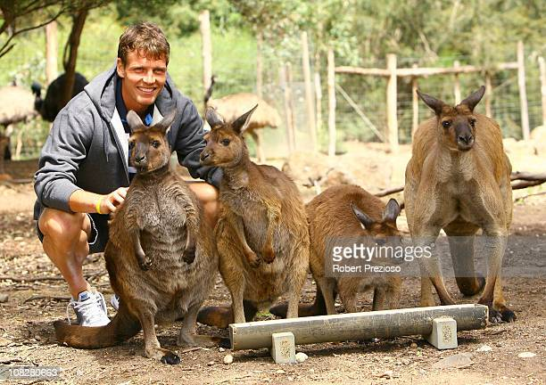 Tomas Berdych of the Czech Republic poses with kangaroos during a visit to Melbourne Zoo on day eight of the 2011 Australian Open at Melbourne Park...