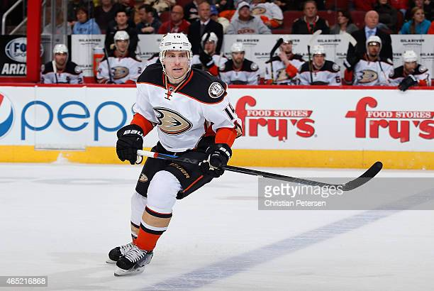 Tomas Fleischmann of the Anaheim Ducks in action during the NHL game against the Arizona Coyotes at Gila River Arena on March 3 2015 in Glendale...