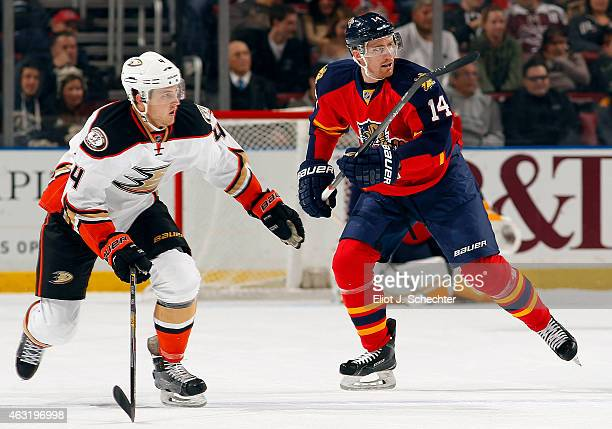Tomas Fleischmann of the Florida Panthers skates for position against Cam Fowler of the Anaheim Ducks at the BBT Center on February 10 2015 in...