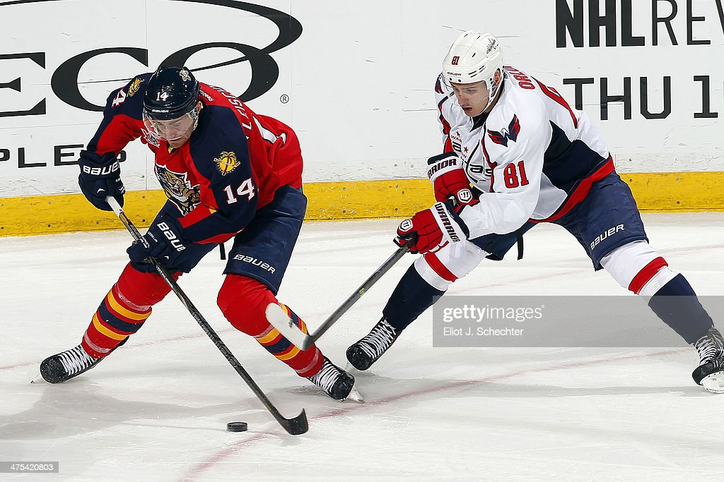 Tomas Fleischmann #14 of the Florida Panthers skates with the puck against Dmitry Orlov #81 of the Washington Capitals at the BB&T Center on February 27, 2014 in Sunrise, Florida.