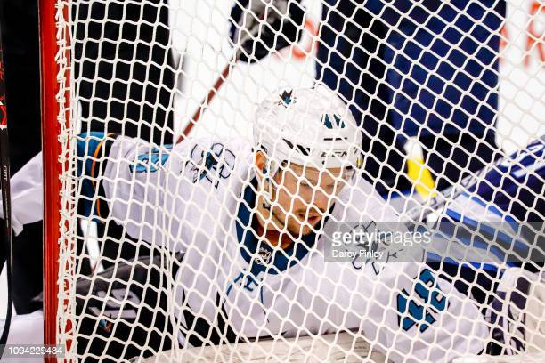 Tomas Hertl of the San Jose Sharks tries to extract himself from the net after a collision during third period action against the Winnipeg Jets at...