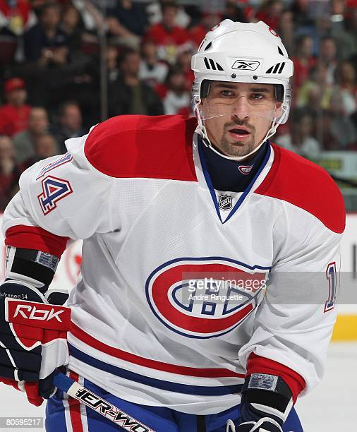 Tomas Plekanec of the Montreal Canadiens looks on during a stoppage in play against the Ottawa Senators at Scotiabank Place on April 1 2008 in Ottawa...