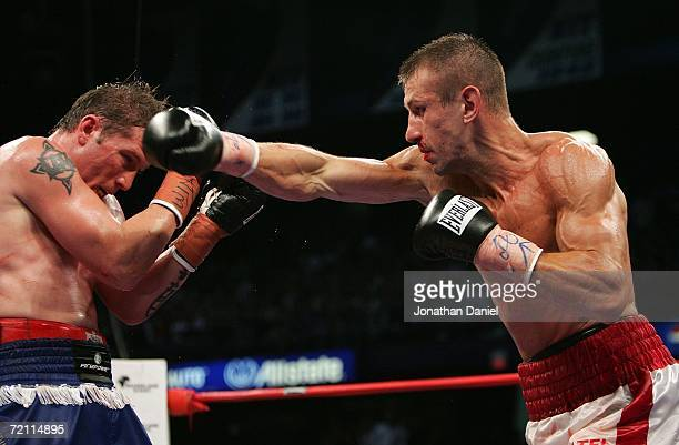 Tomasz Adamek lands a punch on Paul Briggs during the WBC Light Heavyweight Championship bout on October 7, 2006 at the Allstate Arena in Rosement,...