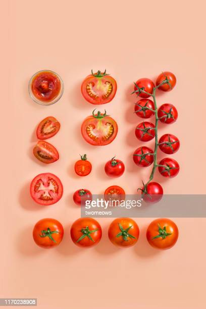tomato on coloured background. - tomato stock pictures, royalty-free photos & images