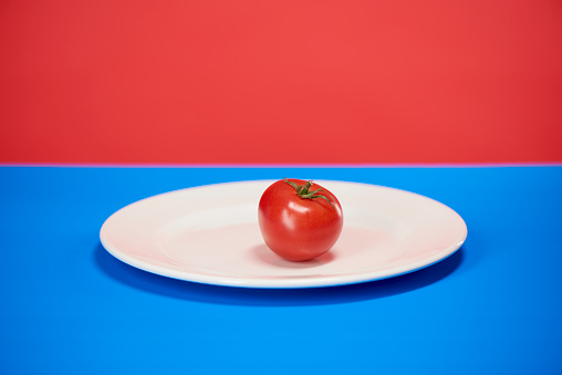 tomato on plate with red and blue background - gettyimageskorea