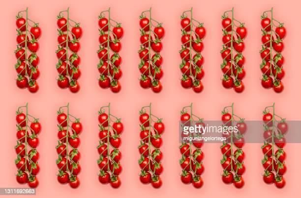 tomato pattern - a gris of vegetables - miguelangelortega fotografías e imágenes de stock
