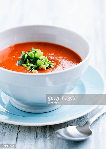 Tomato soup with leek garnish