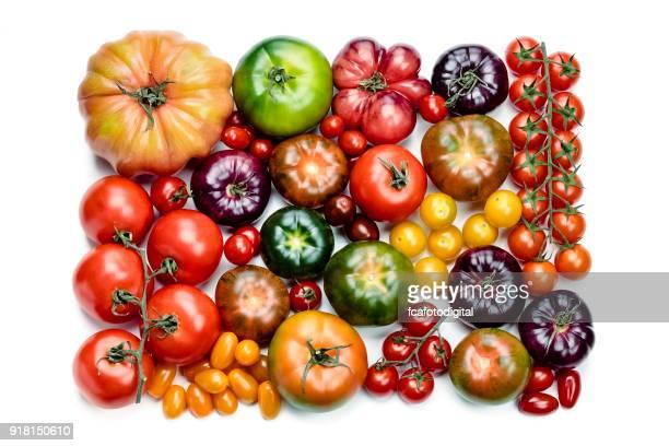 Variedades de tomates aisladas en fondo blanco