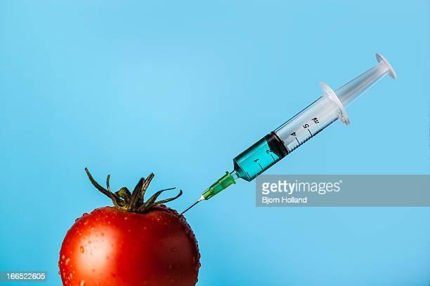 tomato with syringe - vegetais - fotografias e filmes do acervo