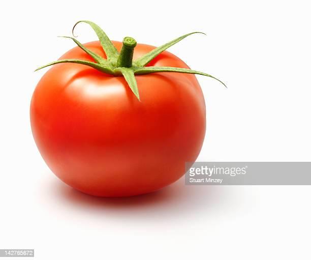 Tomatoe on white background