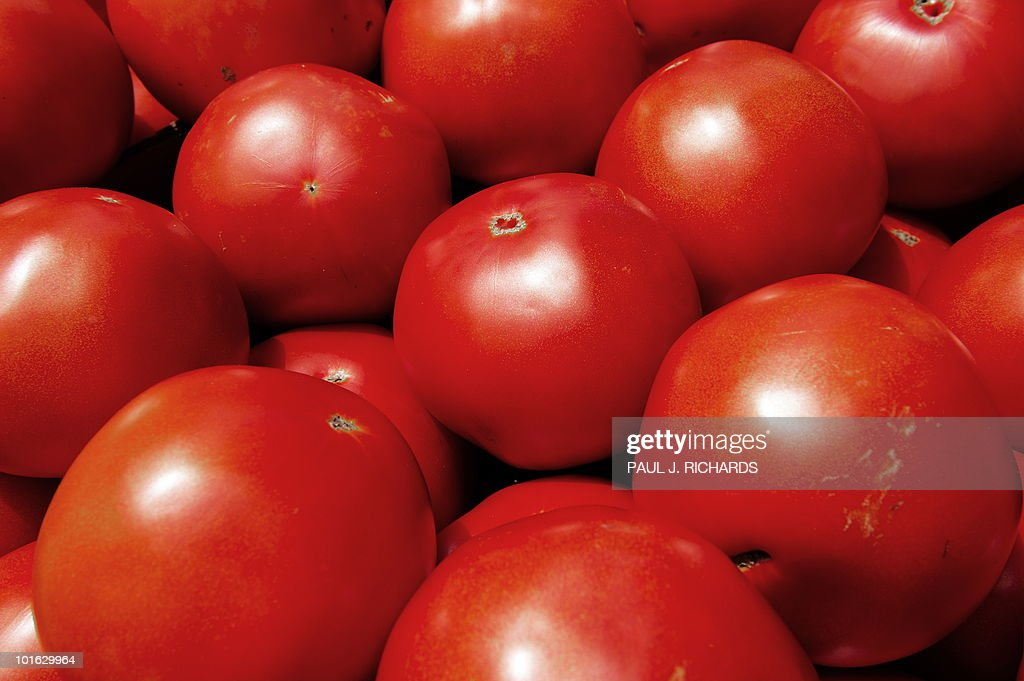 Tomatoes are seen for sale at a 'farmers market' June 3, 2010, in downtown Washington, DC. AFP Photo/Paul J. Richards