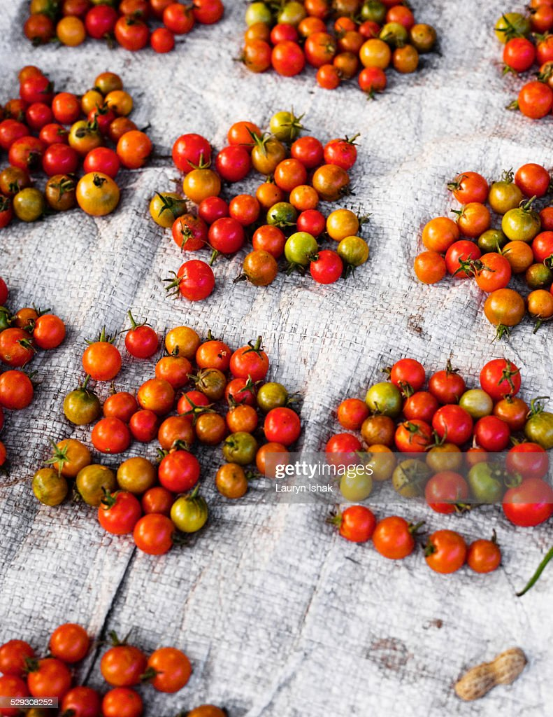 Tomatoes at the Aimere market on Flores island : Stock Photo