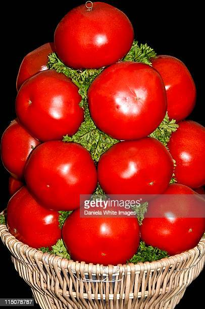 tomatoes galore - chelsea flower show stock pictures, royalty-free photos & images