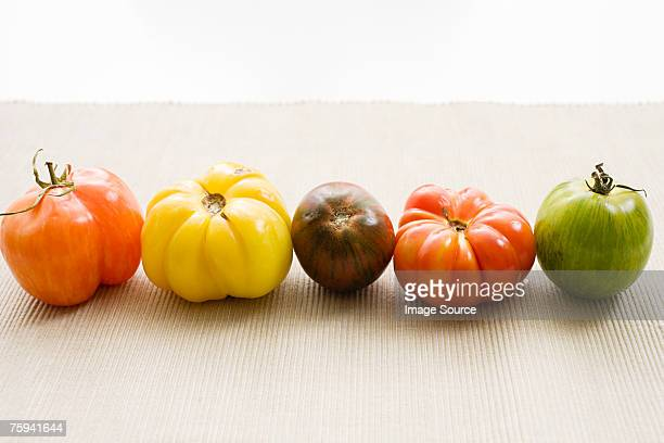 Tomatoes in a row