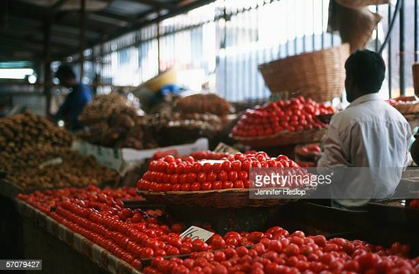 tomatoes on display at a fresh produce market - maputo city stock pictures, royalty-free photos & images