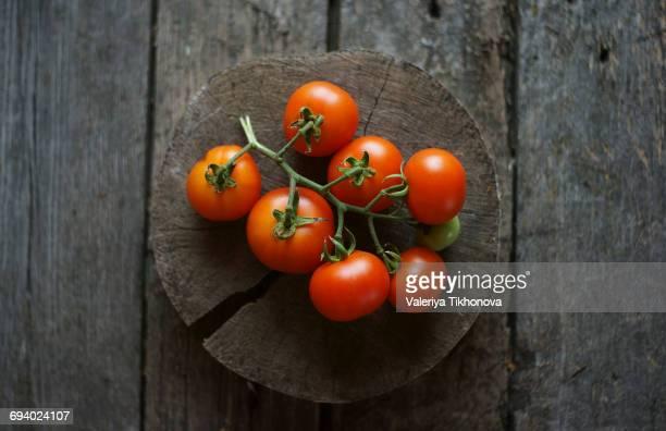 Tomatoes on vine on wooden tree slice