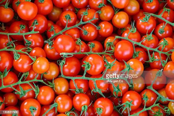 Tomatoes, tomato