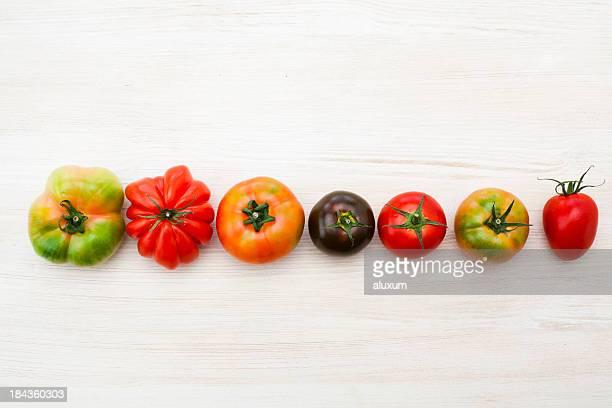 Tomatoes variety