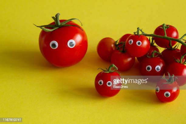 tomatoes with googly eyes - googly eyes stock pictures, royalty-free photos & images