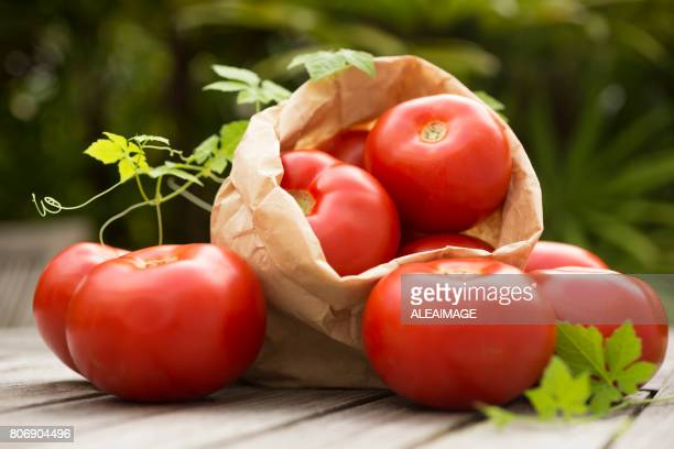 Tomatos outdoors