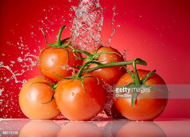 Tomatos Splash on Red Background