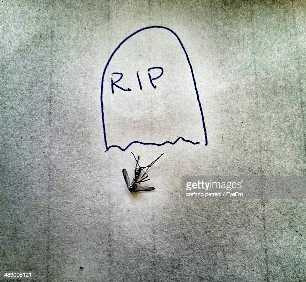 tombstone drawn by dead mosquito - rest in peace stock photos and pictures