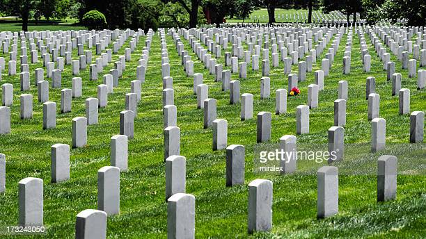 Tombstones and Flower at Arlington National Cemetery, Virginia, USA