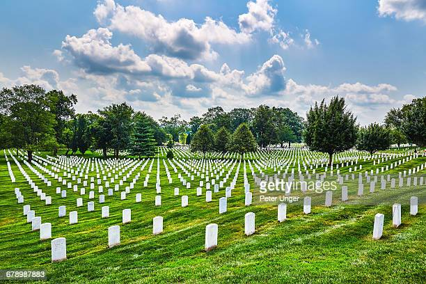 tombstones at arlington national cemetery - arlington national cemetery stock pictures, royalty-free photos & images