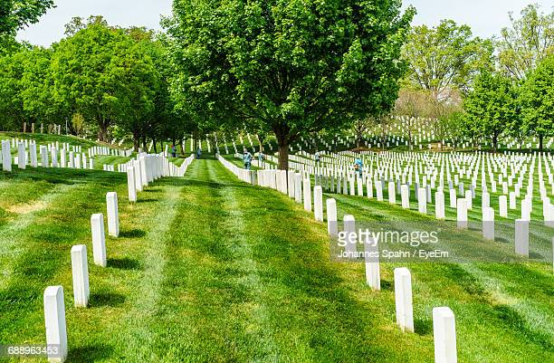 Tombstones At Arlington National Cemetery