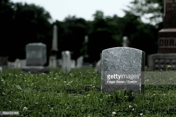 tombstones on grassy field in cemetery against sky - grabmal stock-fotos und bilder