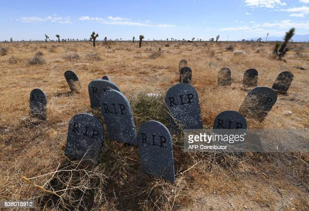 Tombstones placed by members of the Southern California Healthcare Coalition to highlight future deaths of those without health insurance are seen...