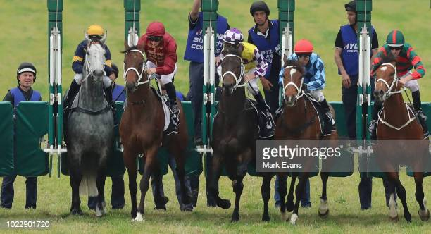 Tommy Berry on Chautauqua jumps in it's barrier trial during Sydney Racing at Rosehill Gardens on August 25 2018 in Sydney Australia