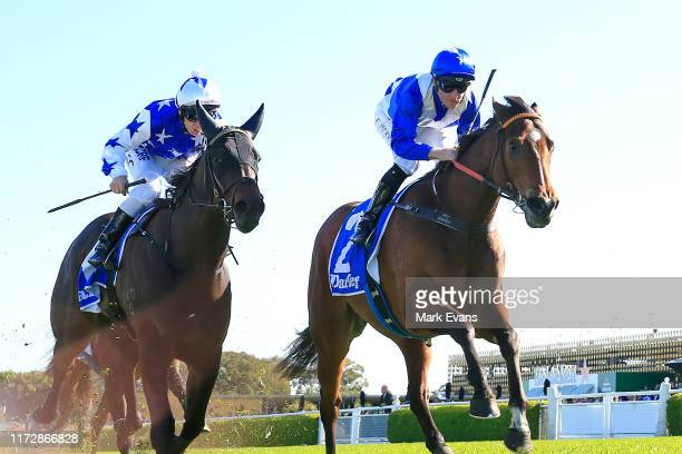 Tommy Berry on Libertini wins race 5 the Darley Furious Stakes during Sydney Racing at Royal Randwick Racecourse on September 07, 2019 in Sydney,...