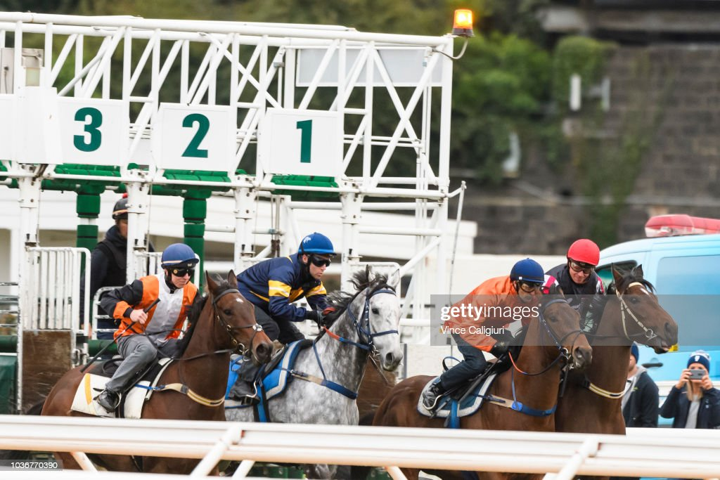 Flemington Trackwork Session & Jumpouts