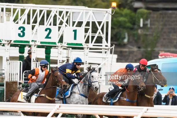 Tommy Berry riding Chautauqua is seen before this mornings barrier jumpouts at Flemington Racecourse on September 21 2018 in Melbourne Australia
