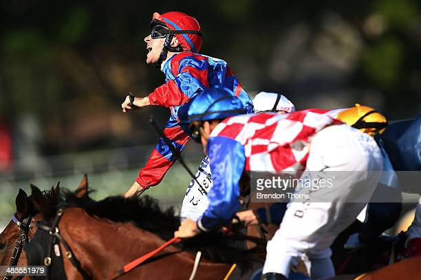 Tommy Berry riding Diamond Drille celebrates after winning race 5 Cellarbrations Queen of the Turf Stakes during Day Two of The Championships at...
