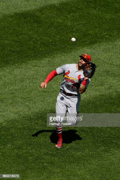 Tommy Pham of the St Louis Cardinals makes a catch in center field against the Minnesota Twins during the interleague game on May 16 2018 at Target...