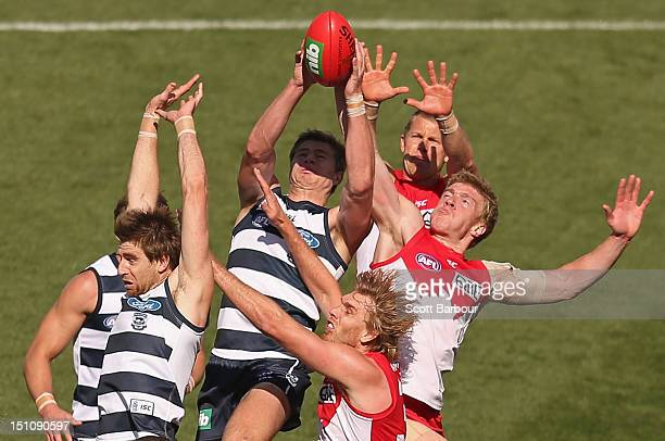 Tommy Walsh of the Swans competes for the ball during the round 23 AFL match between the Geelong Cats and the Sydney Swans at Simonds Stadium on...