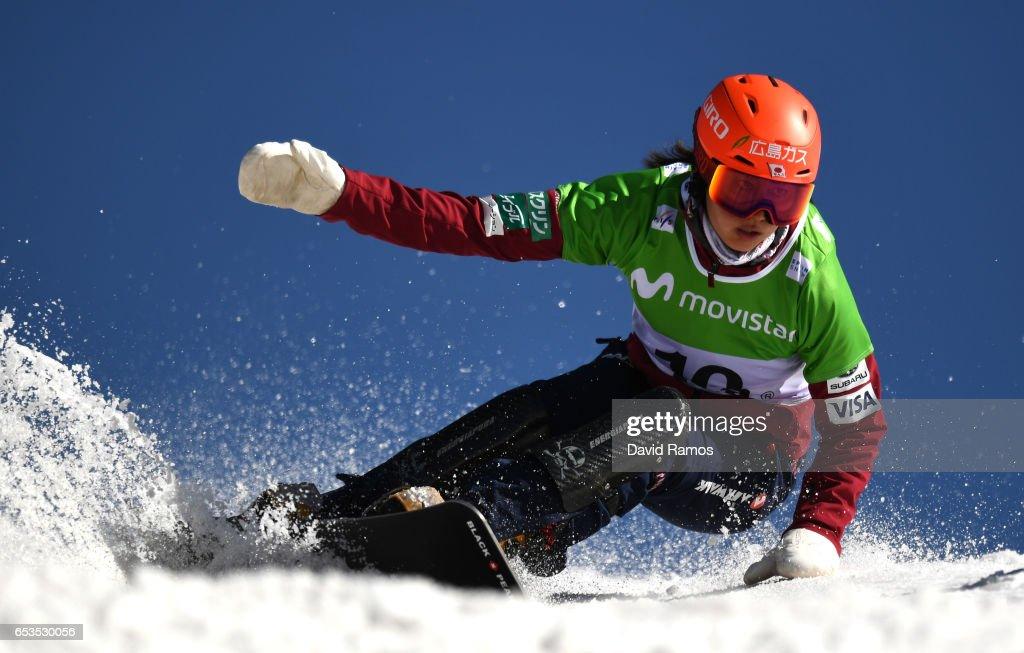FIS Freestyle Ski & Snowboard World Championships 2017 - Day Eight