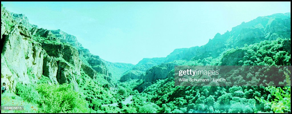 Toned Image Of Hills And Forests : Foto stock