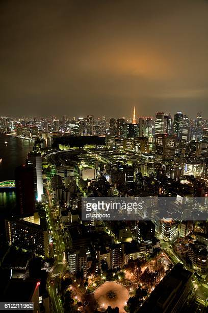 Toned image of Tokyo Tower and the city at night. Tokyo Prefecture, Japan
