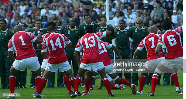 Tonga Haka before the IRB World Cup match between South Africa and Tonga.