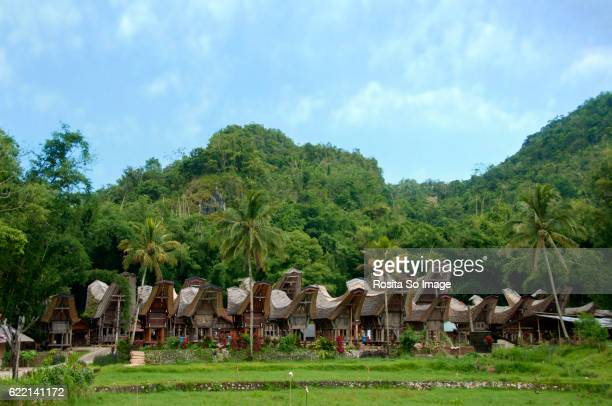Tongkonan in a Torajan Village, South Sulawesi, Indonesia
