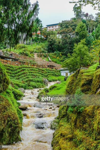 tongsa river near a temple in bumthang, bhutan. - ipek morel stock pictures, royalty-free photos & images