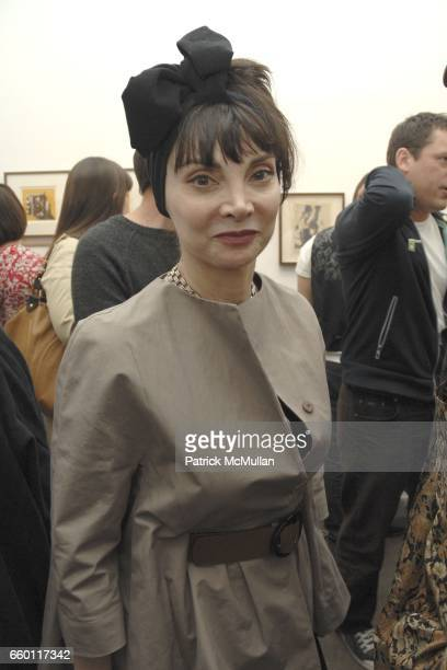 Toni Basil attends SHE Images of women by Wallace Berman and Richard Prince Opening at Michael Kohn Gallery on January 15 2009 in Beverley Hills...