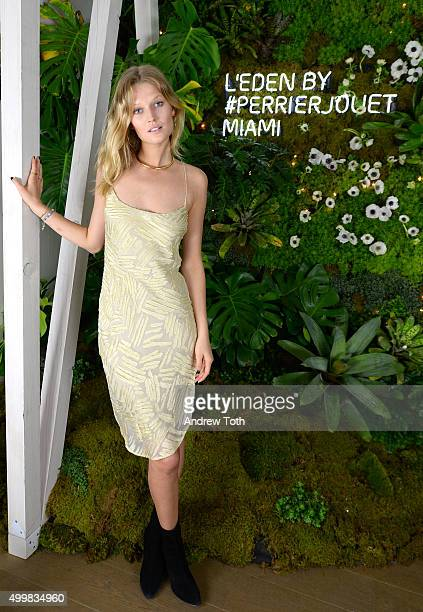 Toni Garrn attends the Maiyet Toni Garrn Celebration of Plan International at L'Eden by PerrierJouet at Penthouse at the Faena Hotel Miami Beach on...