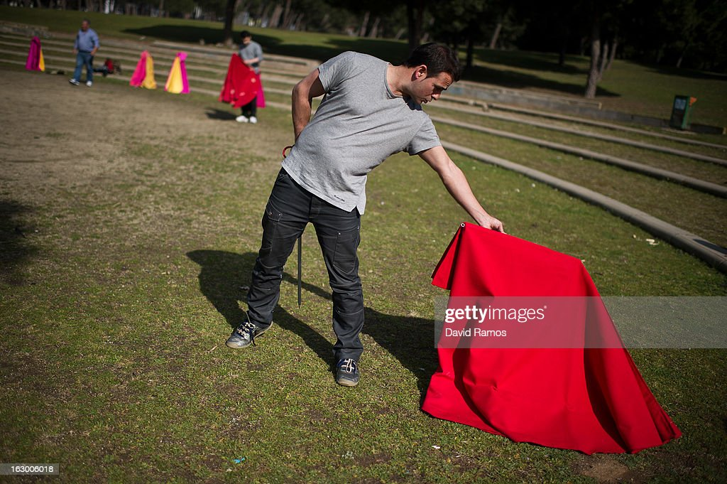 Tono Fernandez, 35, practices bullfighting in a city park in Santa Perpetua de la Mogoda on March 3, 2013 in Barcelona, Spain. On February 12 the Spanish Parliament accepted a petition from bullfight supporters asking for the sport to become a key part of the Spain's cultural heritage. The petition, of 590,000 signatures, has been promoted by the Federation of Bullfighting Entities of Catalonia. The last bullfight in Catalonia was held in September 25, 2011.