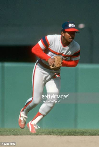 Tony Bernazard of the Chicago White Sox in action against the Baltimore Orioles during an Major League Baseball game circa 1983 at Memorial Stadium...