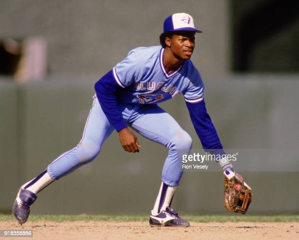 Tony Fernandez of the Toronto Blue Jays fields during an MLB game against the Chicago White Sox at Comiskey Park in Chicago Illinois during the 1988...