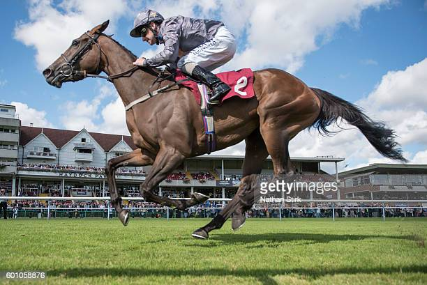 Tony Hamilton riding Bell Heather during The ApolloBET Bet On Lotteries Fillies Handicap Stakes at Haydock Park Racecourse on August 4, 2016 in...